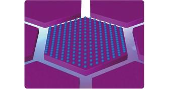 Pixel con tecnologia HCP
